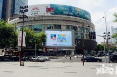 封靈師現世 《無雙小師妹》亮相上海廣場