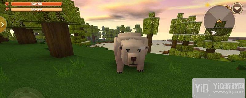 迷你世界北极熊怎么驯服1