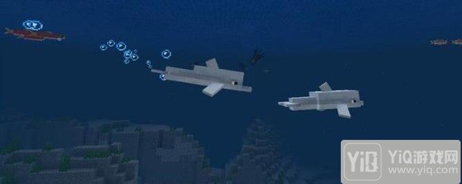 我的世界海豚如何喂1