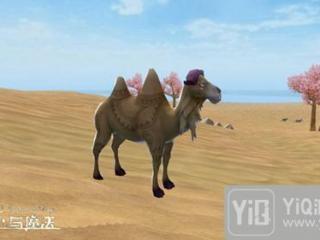 创造与魔法骆驼在哪里 骆驼分布位置一览分布