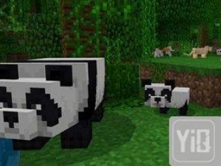 我的世界全新熊猫版本更新 国宝大熊猫来啦