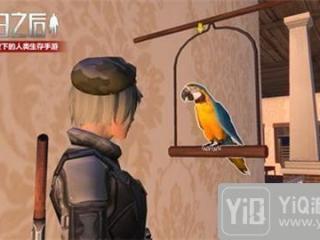 明日之后鹦鹉怎么说话 鹦鹉说话方法介绍